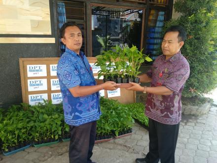 Bantuan Bibit Cabai dari Dinas Ketahanan Pangan Provinsi Bali